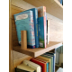 Floating shelf with bookend